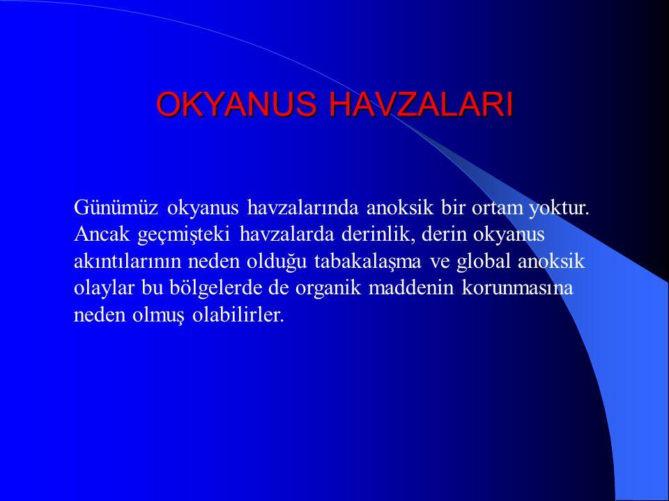 OKYANUS HAVZALARI