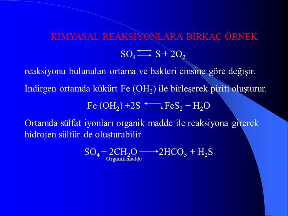 KİMYASAL REAKSİYONLARA BİRKAÇ ÖRNEK SO4 S + 2O2