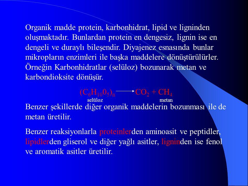 Organik madde protein, karbonhidrat, lipid ve ligninden oluşmaktadır