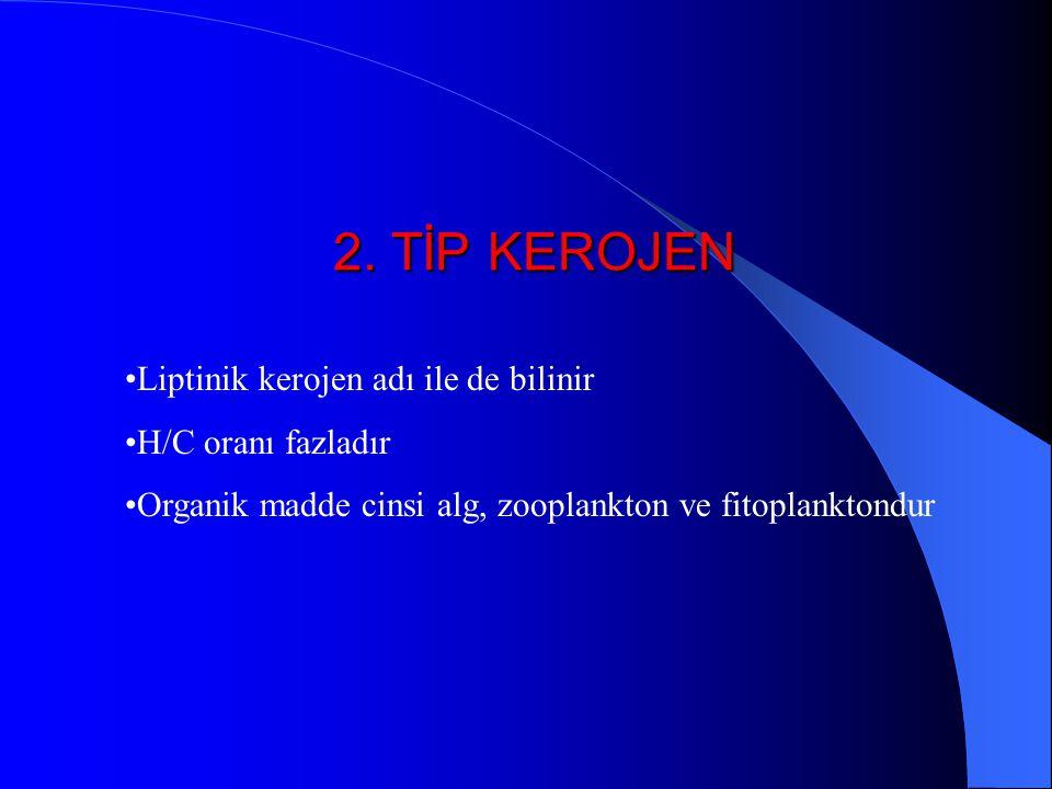 2. TİP KEROJEN Liptinik kerojen adı ile de bilinir H/C oranı fazladır