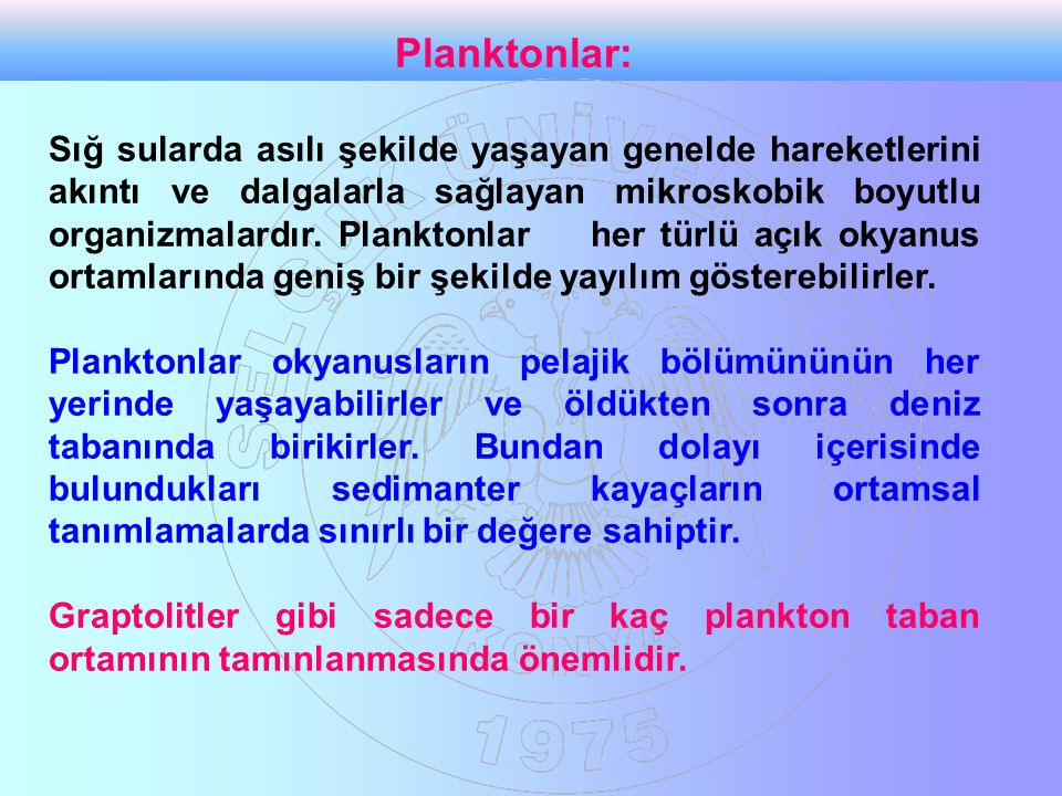 Planktonlar: