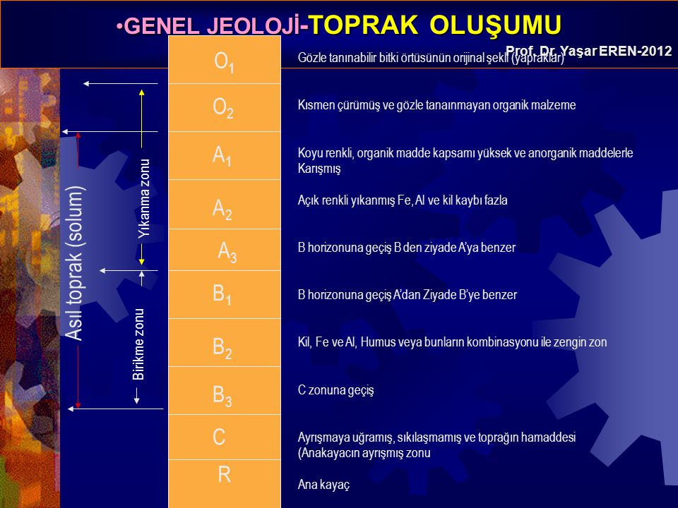O1 O2 A1 A2 Asıl toprak (solum) A3 B1 B2 B3 C O2 R Yıkanma zonu