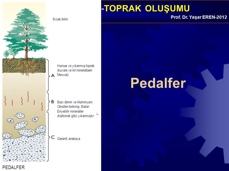 Pedalfer PEDALFER Sıcak iklim Humus ve yıkanmış toprak