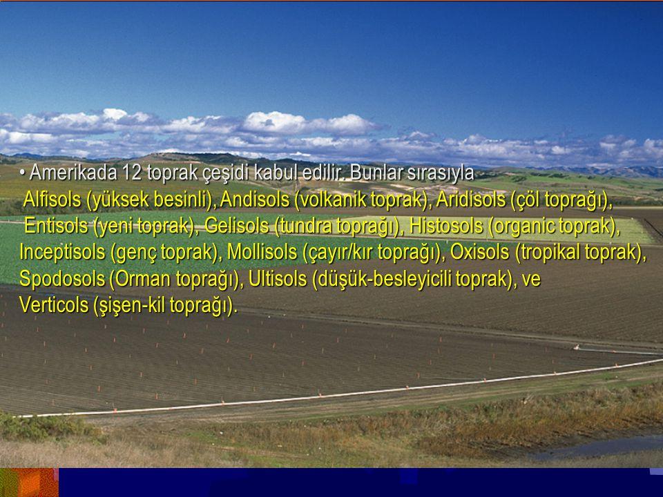 Yrd.Doç.Dr.Yaşar EREN • Amerikada 12 toprak çeşidi kabul edilir. Bunlar sırasıyla.