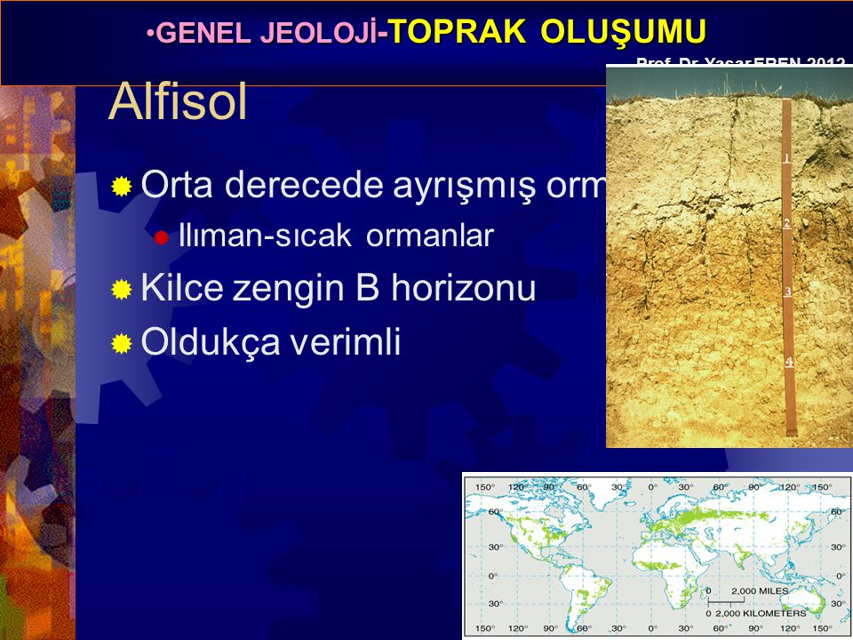 Alfisol Orta derecede ayrışmış orman toprağı Kilce zengin B horizonu