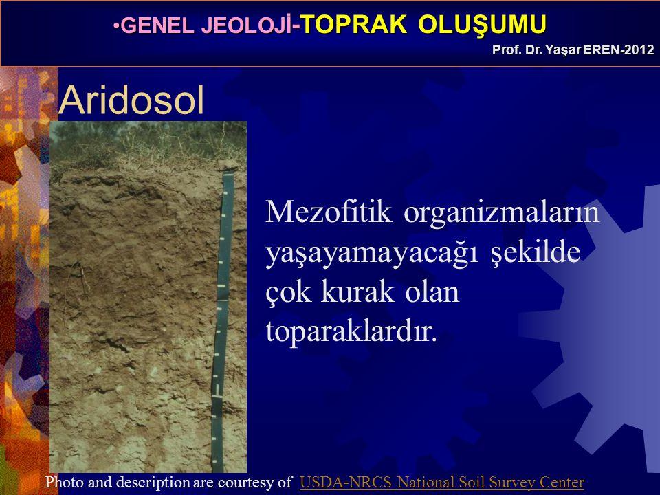 Aridosol Mezofitik organizmaların yaşayamayacağı şekilde çok kurak olan toparaklardır.