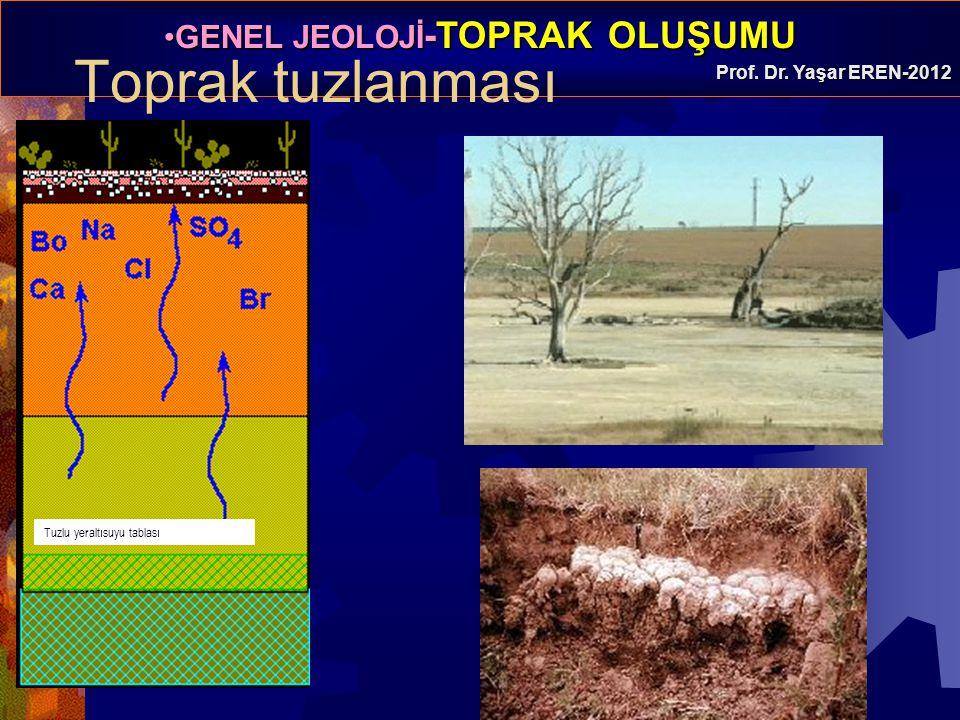 Toprak tuzlanması Tuzlu yeraltısuyu tablası