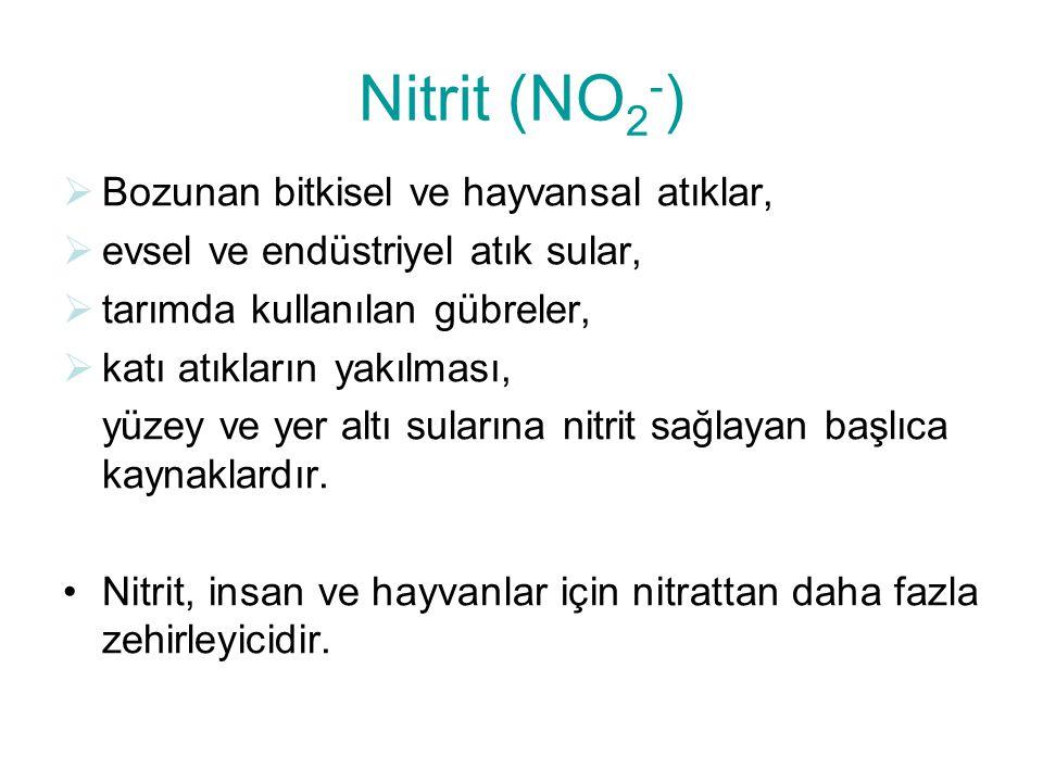 Nitrit (NO2-) Bozunan bitkisel ve hayvansal atıklar,