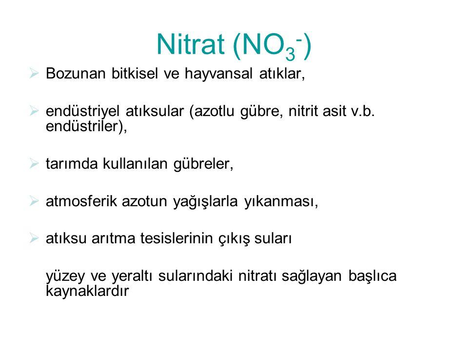 Nitrat (NO3-) Bozunan bitkisel ve hayvansal atıklar,