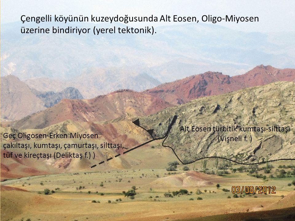 Alt Eosen türbitik kumtaşı-silttaşı (Vişneli f. )