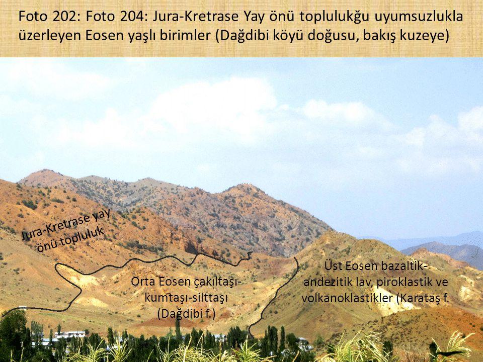 Foto 202: Foto 204: Jura-Kretrase Yay önü toplulukğu uyumsuzlukla üzerleyen Eosen yaşlı birimler (Dağdibi köyü doğusu, bakış kuzeye)