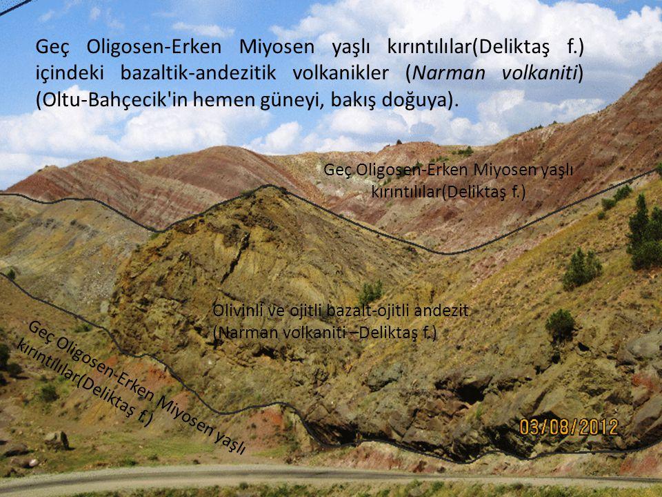 Geç Oligosen-Erken Miyosen yaşlı kırıntılılar(Deliktaş f.)