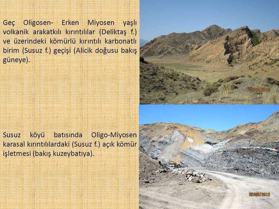 Geç Oligosen- Erken Miyosen yaşlı volkanik arakatkılı kırıntılılar (Deliktaş f.) ve üzerindeki kömürlü kırıntılı karbonatlı birim (Susuz f.) geçişi (Alicik doğusu bakış güneye).