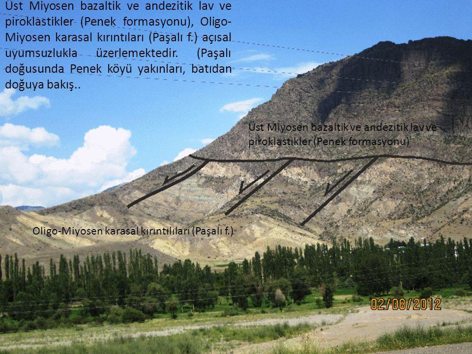Üst Miyosen bazaltik ve andezitik lav ve piroklastikler (Penek formasyonu), Oligo-Miyosen karasal kırıntıları (Paşalı f.) açısal uyumsuzlukla üzerlemektedir. (Paşalı doğusunda Penek köyü yakınları, batıdan doğuya bakış..