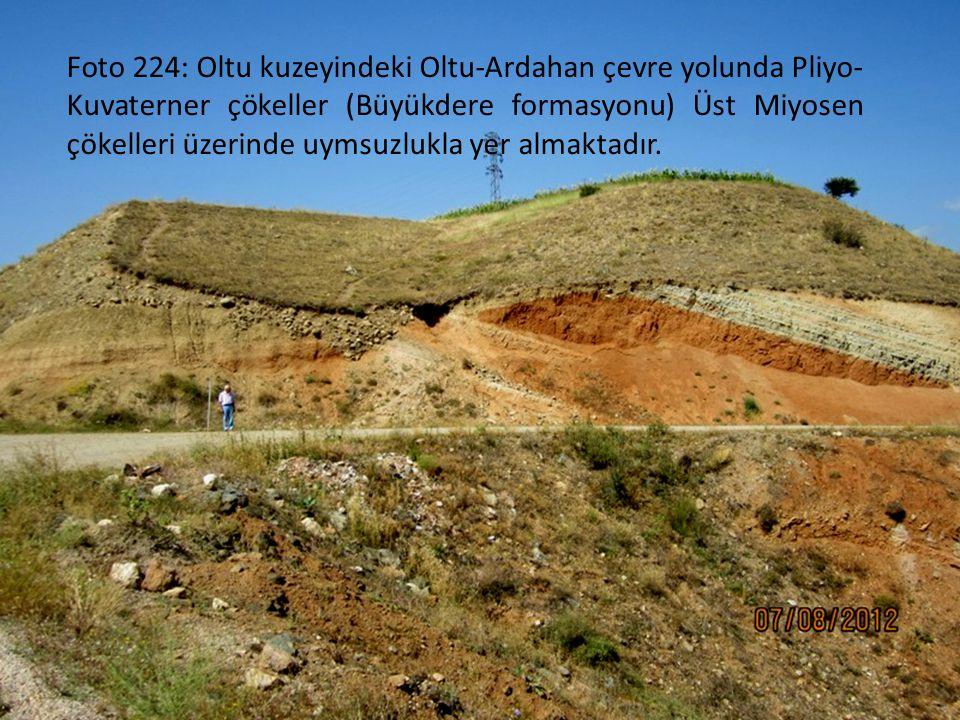 Foto 224: Oltu kuzeyindeki Oltu-Ardahan çevre yolunda Pliyo-Kuvaterner çökeller (Büyükdere formasyonu) Üst Miyosen çökelleri üzerinde uymsuzlukla yer almaktadır.