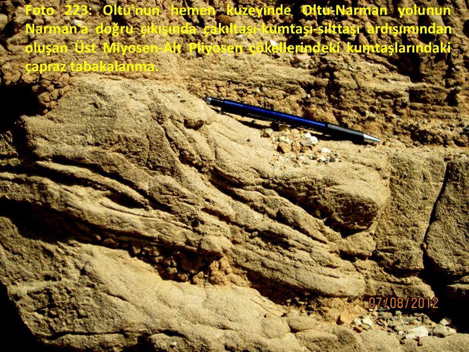 Foto 223: Oltu nun hemen kuzeyinde Oltu-Narman yolunun Narman a doğru çıkışında çakıltaşı-kumtaşı-silttaşı ardışımından oluşan Üst Miyosen-Alt Pliyosen çökellerindeki kumtaşlarındaki çapraz tabakalanma.
