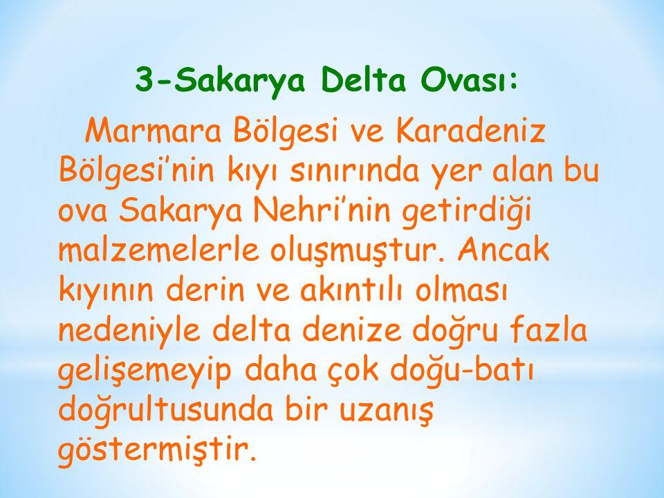 3-Sakarya Delta Ovası: Marmara Bölgesi ve Karadeniz Bölgesi'nin kıyı sınırında yer alan bu ova Sakarya Nehri'nin getirdiği malzemelerle oluşmuştur.