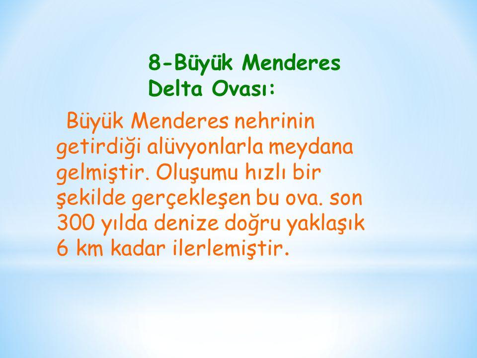 8-Büyük Menderes Delta Ovası: Büyük Menderes nehrinin getirdiği alüvyonlarla meydana gelmiştir.