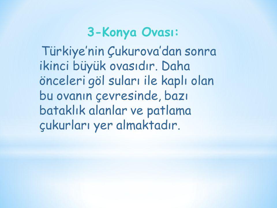 3-Konya Ovası: Türkiye'nin Çukurova'dan sonra ikinci büyük ovasıdır