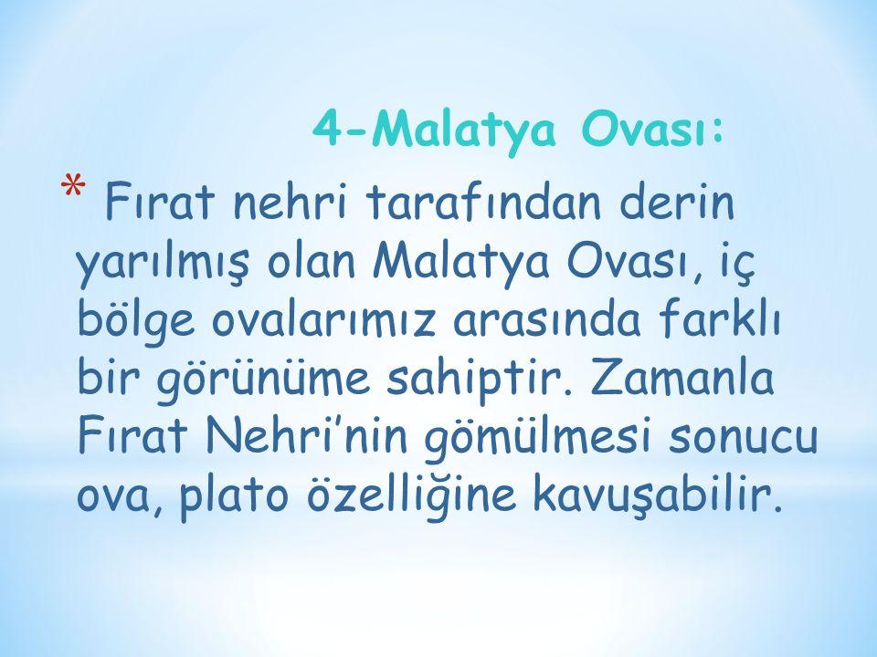 4-Malatya Ovası: