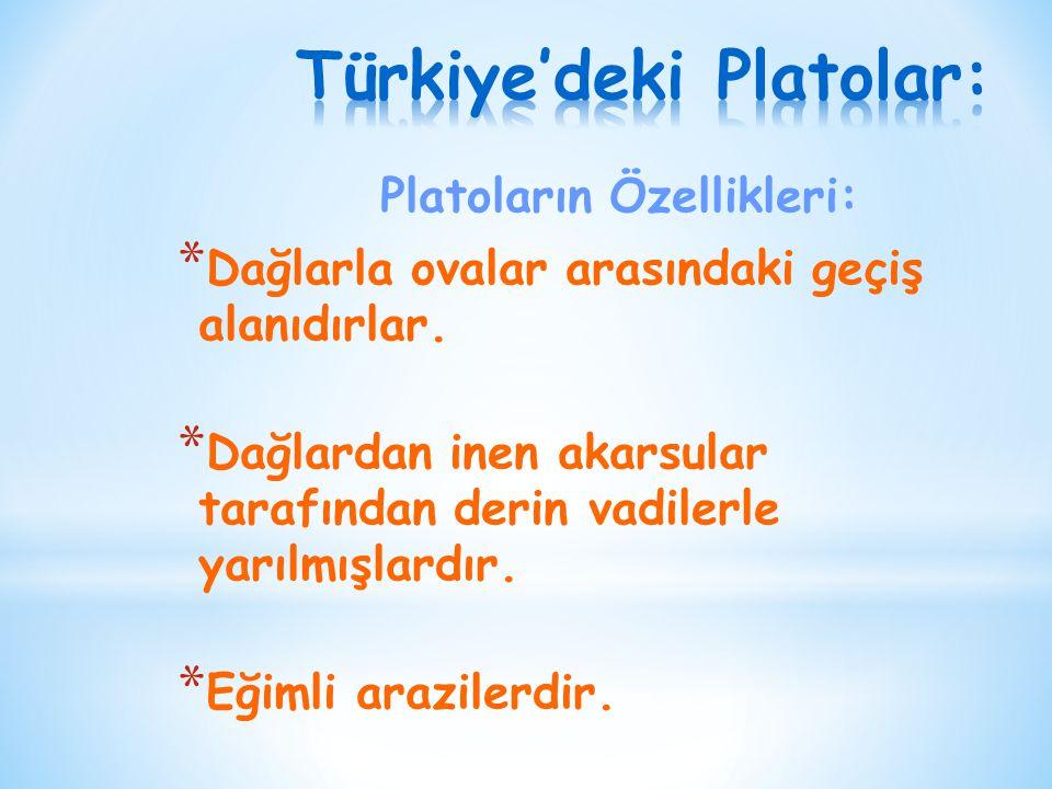 Türkiye'deki Platolar: