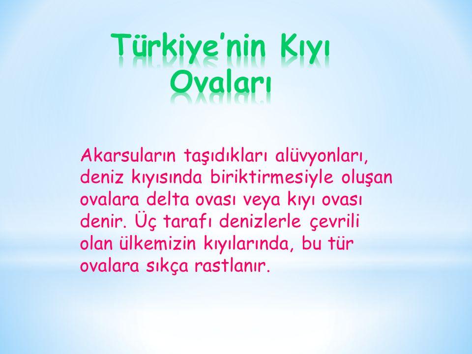 Türkiye'nin Kıyı Ovaları