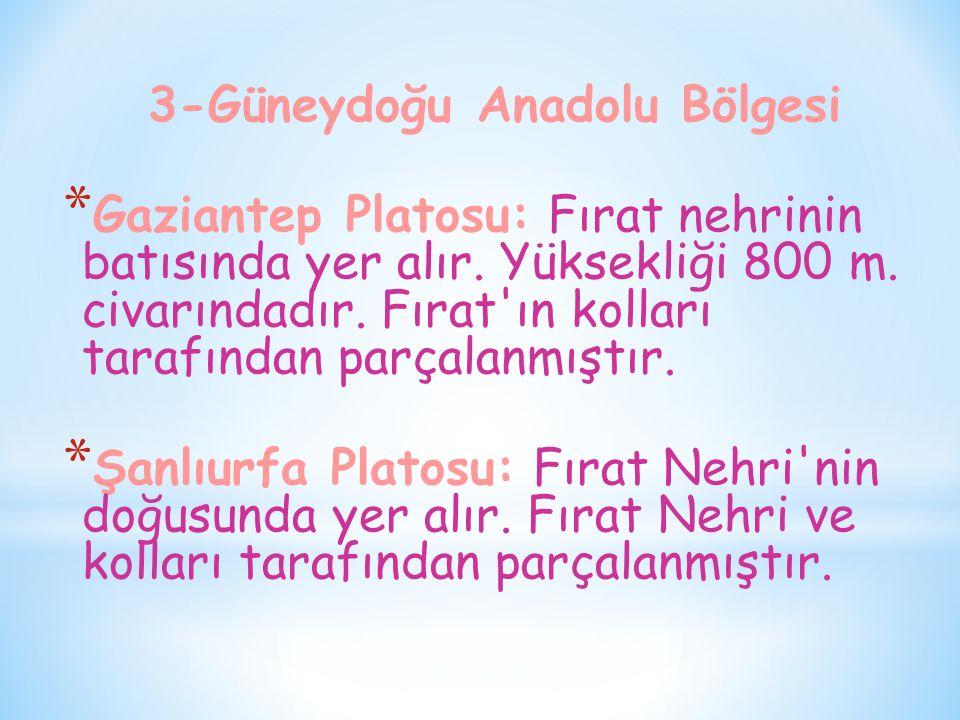 3-Güneydoğu Anadolu Bölgesi