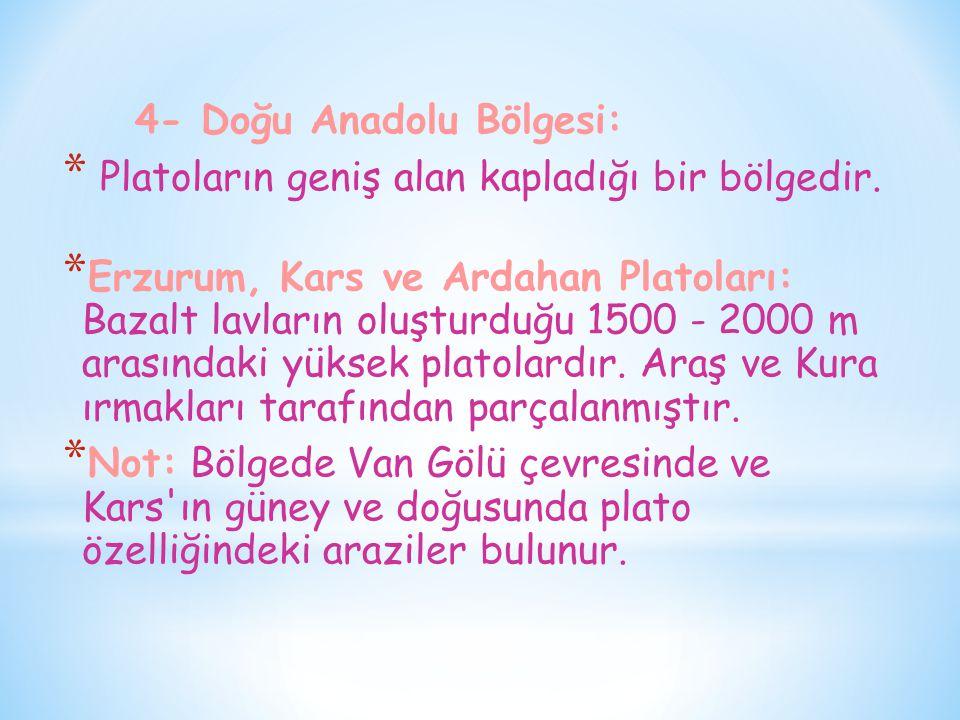 4- Doğu Anadolu Bölgesi: