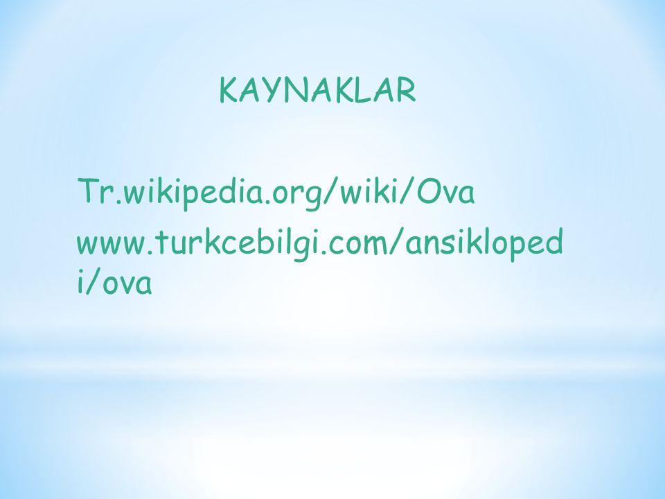 Tr.wikipedia.org/wiki/Ova www.turkcebilgi.com/ansikloped i/ova