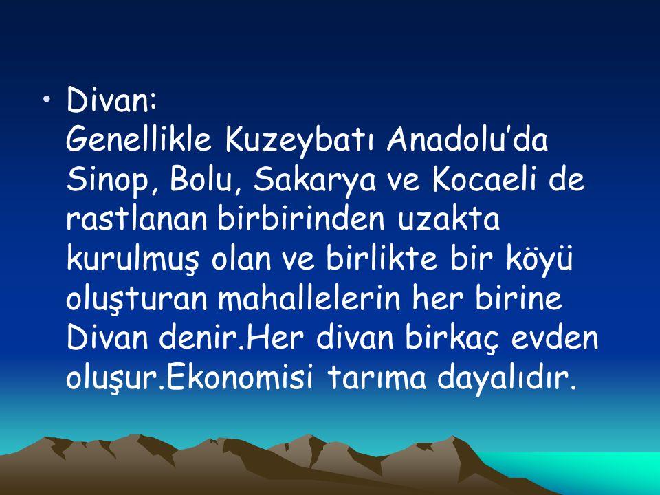 Divan: Genellikle Kuzeybatı Anadolu'da Sinop, Bolu, Sakarya ve Kocaeli de rastlanan birbirinden uzakta kurulmuş olan ve birlikte bir köyü oluşturan mahallelerin her birine Divan denir.Her divan birkaç evden oluşur.Ekonomisi tarıma dayalıdır.