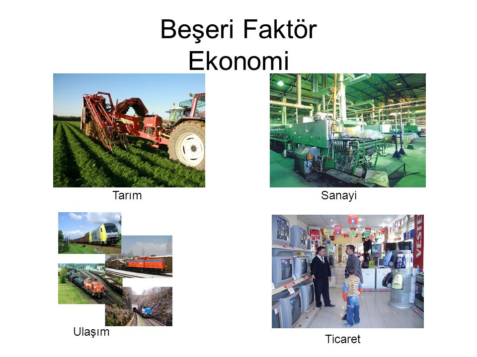Beşeri Faktör Ekonomi Tarım Sanayi Ulaşım Ticaret