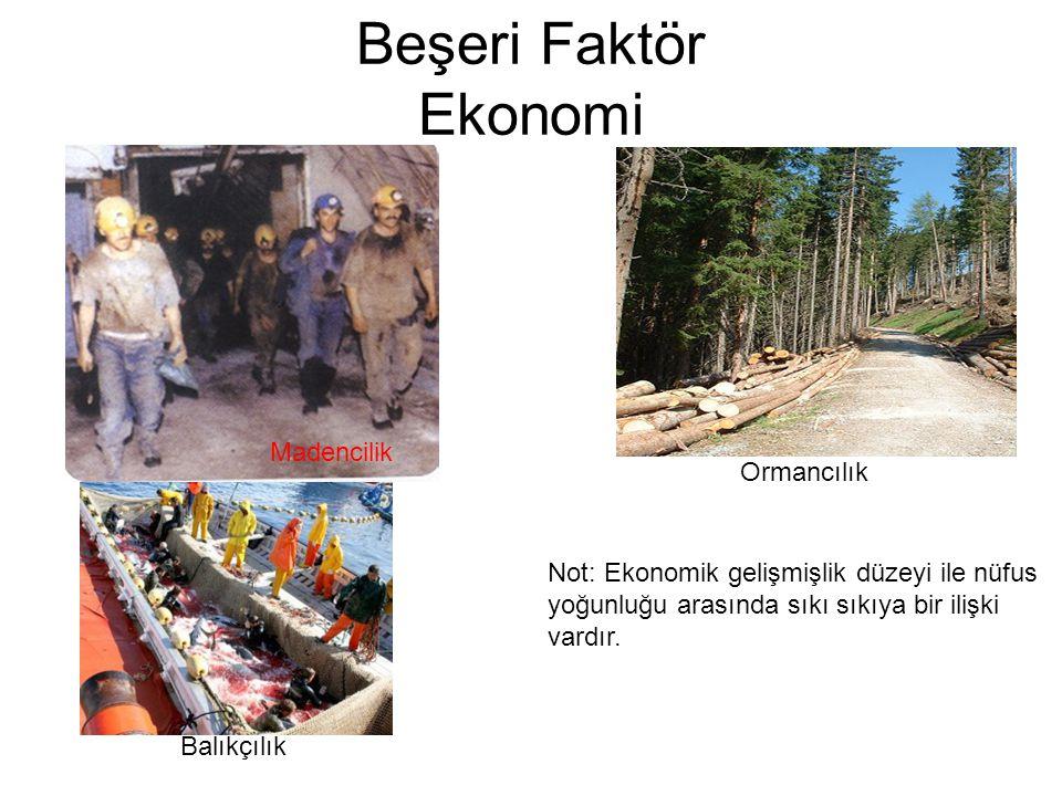 Beşeri Faktör Ekonomi Madencilik Ormancılık