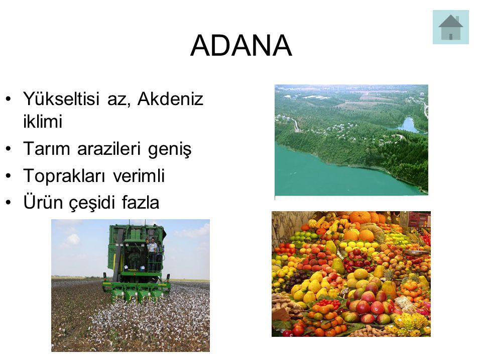 ADANA Yükseltisi az, Akdeniz iklimi Tarım arazileri geniş