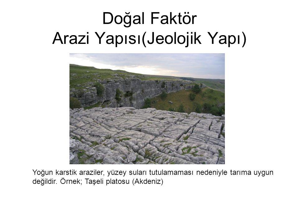 Doğal Faktör Arazi Yapısı(Jeolojik Yapı)