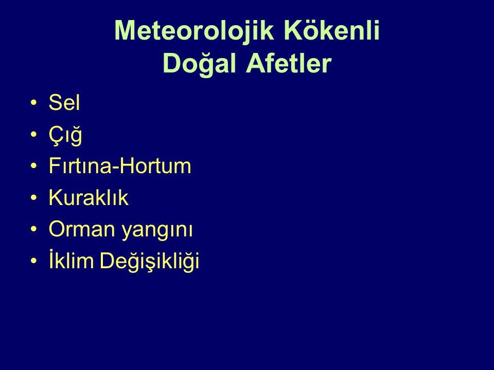 Meteorolojik Kökenli Doğal Afetler