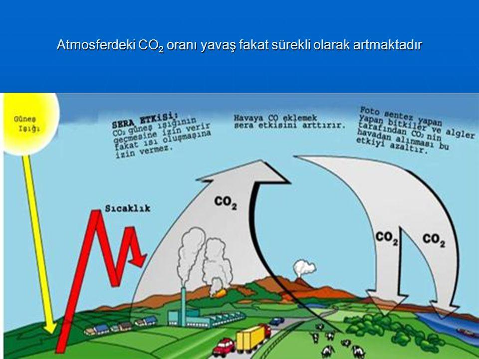 Atmosferdeki CO2 oranı yavaş fakat sürekli olarak artmaktadır