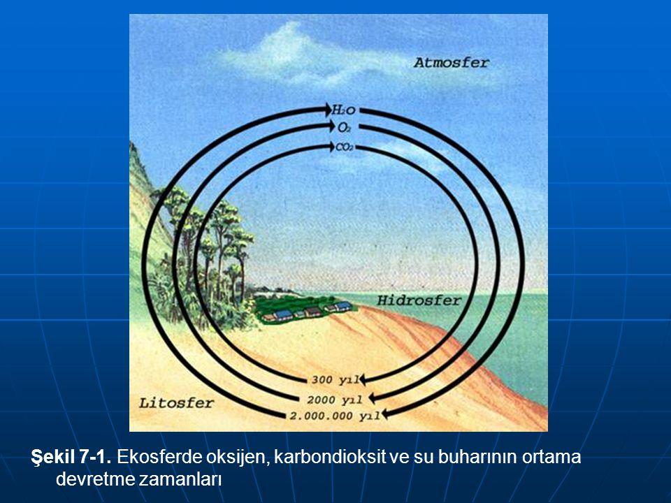 Şekil 7-1. Ekosferde oksijen, karbondioksit ve su buharının ortama devretme zamanları