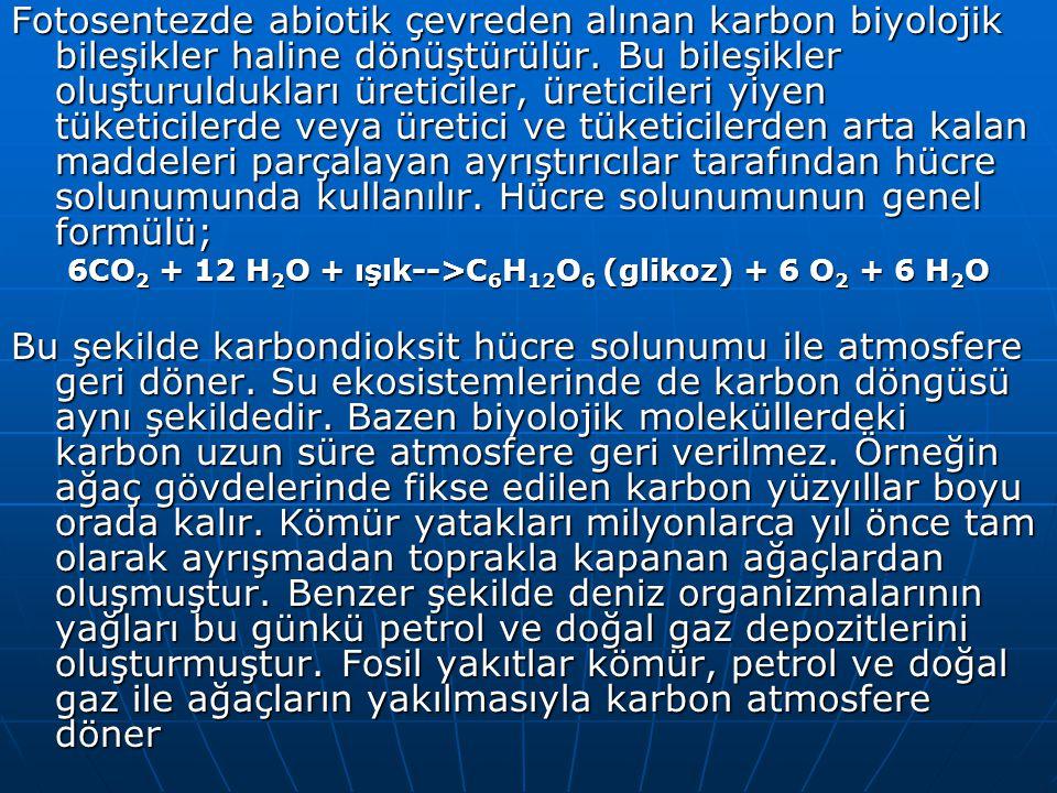 6CO2 + 12 H2O + ışık-->C6H12O6 (glikoz) + 6 O2 + 6 H2O