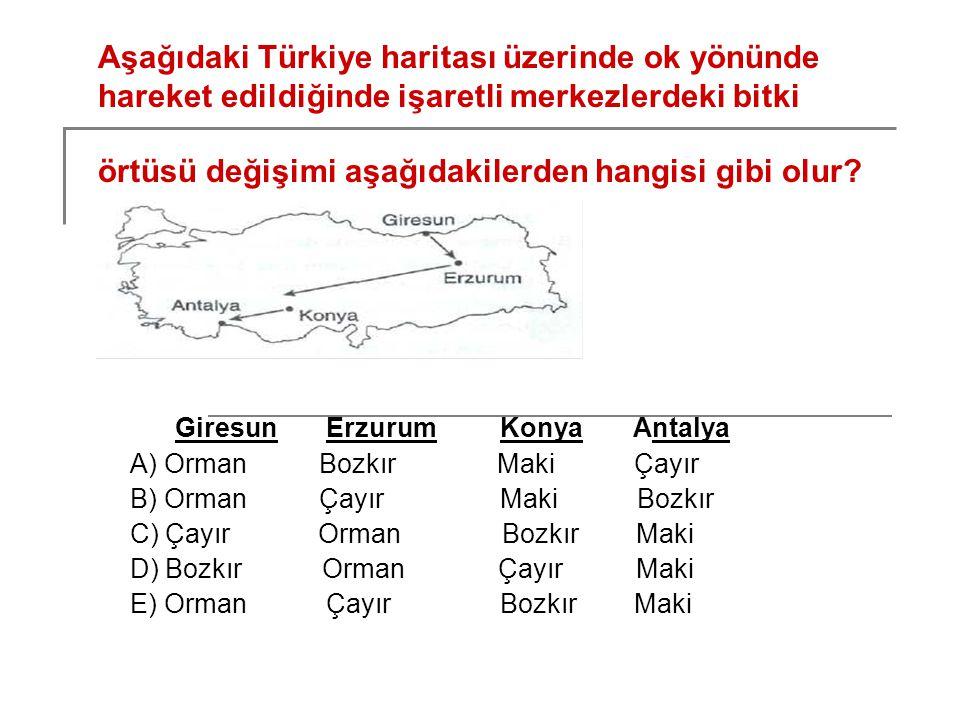 Aşağıdaki Türkiye haritası üzerinde ok yönünde hareket edildiğinde işaretli merkezlerdeki bitki örtüsü değişimi aşağıdakilerden hangisi gibi olur