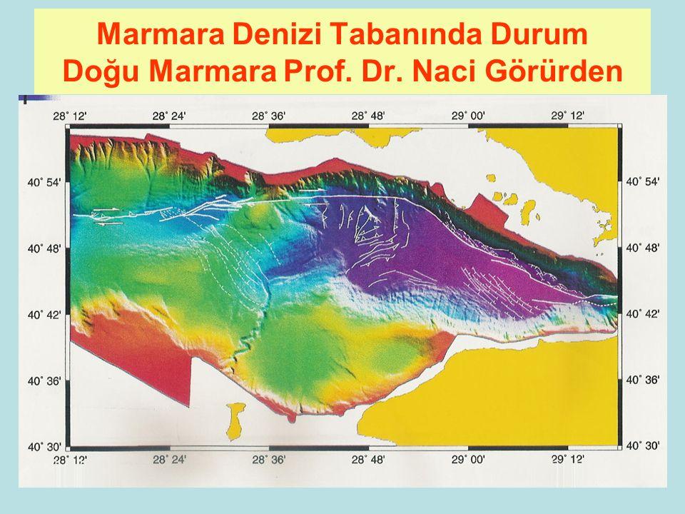 Marmara Denizi Tabanında Durum Doğu Marmara Prof. Dr. Naci Görürden