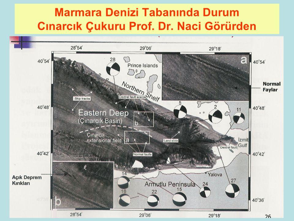 Marmara Denizi Tabanında Durum Cınarcık Çukuru Prof. Dr. Naci Görürden
