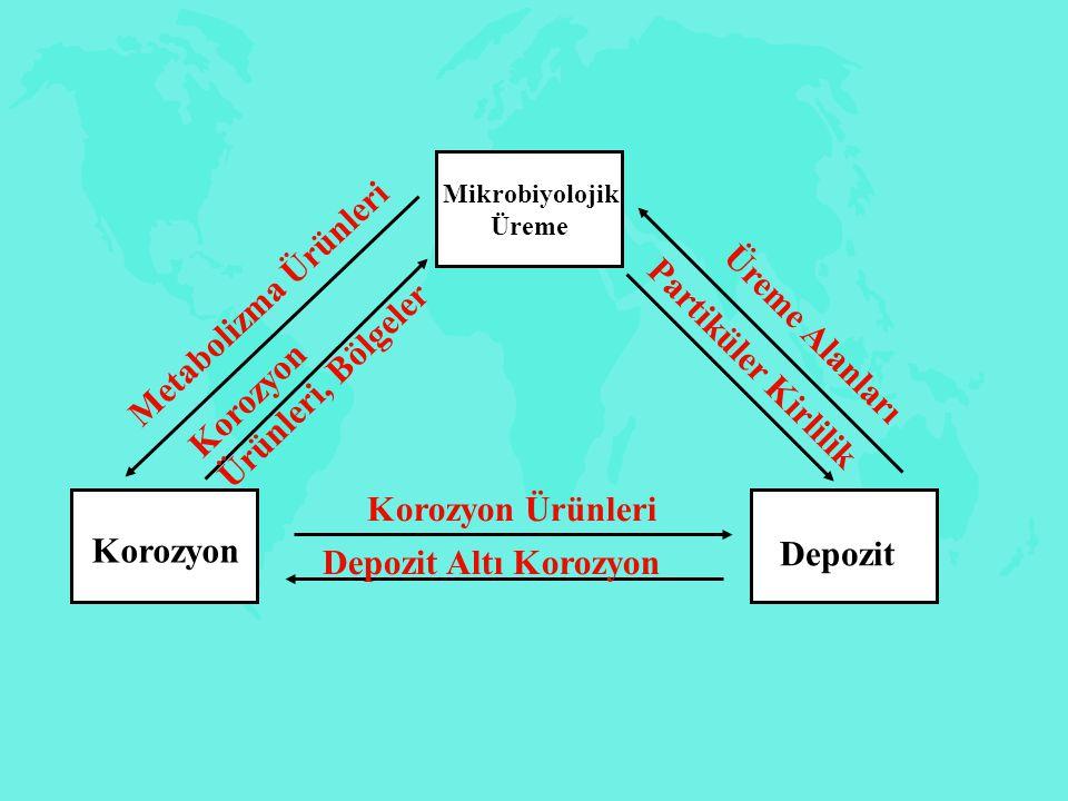 Korozyon Ürünleri, Bölgeler Partiküler Kirlilik