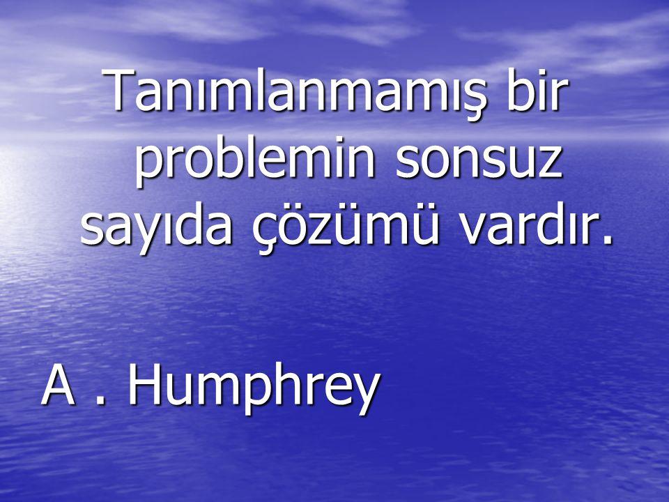 Tanımlanmamış bir problemin sonsuz sayıda çözümü vardır.