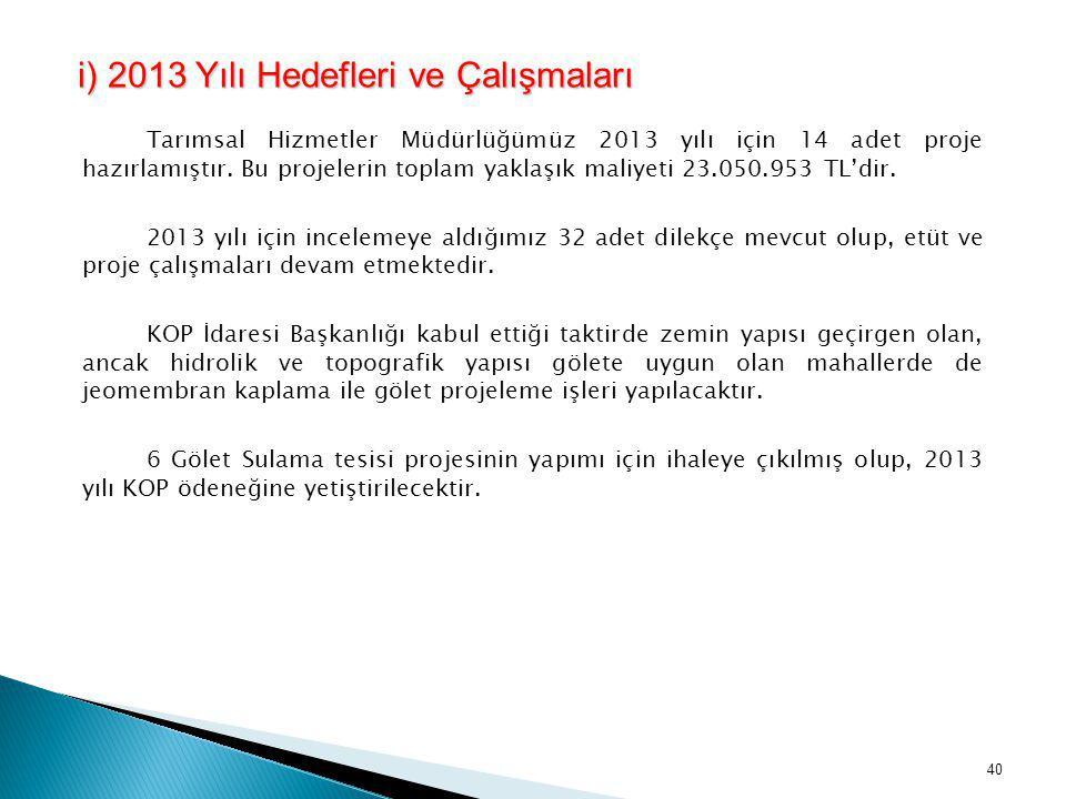 i) 2013 Yılı Hedefleri ve Çalışmaları