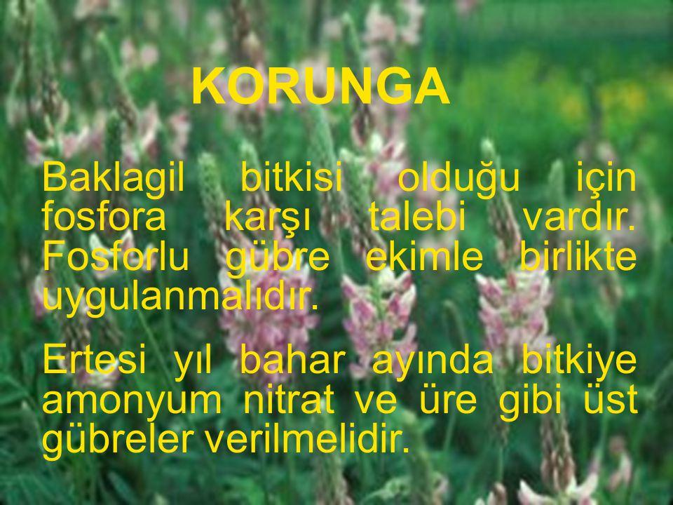 KORUNGA Baklagil bitkisi olduğu için fosfora karşı talebi vardır. Fosforlu gübre ekimle birlikte uygulanmalıdır.