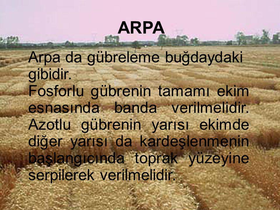 ARPA Arpa da gübreleme buğdaydaki gibidir.
