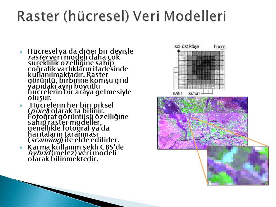 Raster (hücresel) Veri Modelleri