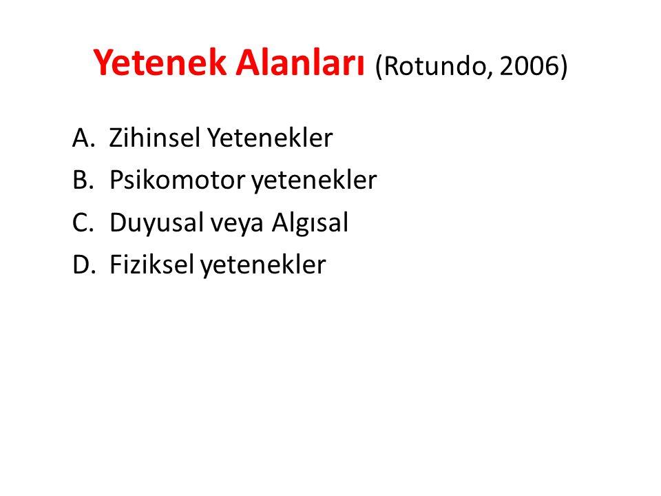 Yetenek Alanları (Rotundo, 2006)