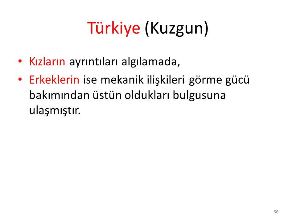 Türkiye (Kuzgun) Kızların ayrıntıları algılamada,