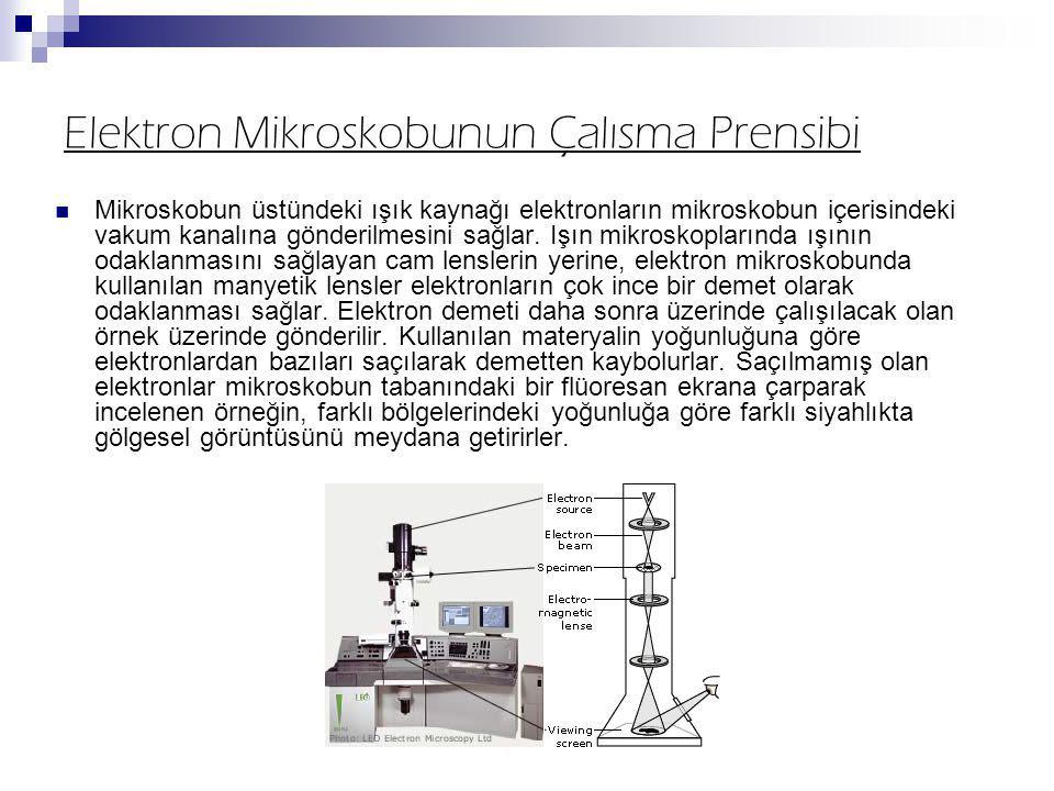 Elektron Mikroskobunun Çalısma Prensibi